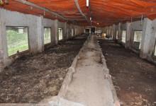 Khu chuồng trại nuôi giun quế